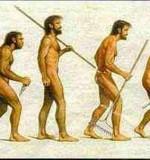 Evolution des mutuelles