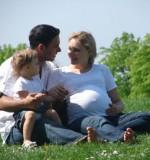 L'assurance vie et son évolution
