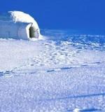 La garantie gel en assurance habitation