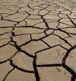 La garantie catastrophe naturelle en cas de sécheresse